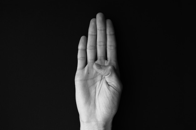 Linguaggio dei segni alfabeto lettera b