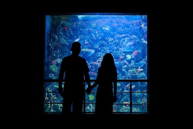 Silhouette di una coppia che guarda da una sala buia il mondo sottomarino in un grande acquario