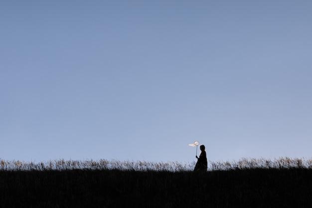 La siluetta della bambina sta camminando con il retino per farfalle e sta catturando le farfalle sulle verdi colline il giorno d'estate. copia spazio.