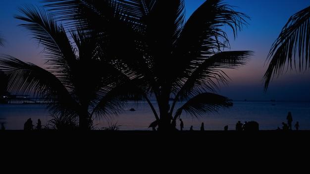 Silhouette di persone sulla spiaggia tropicale al tramonto - turisti che si godono il tempo durante le vacanze estive - concetto di viaggio, vacanze e paesaggio - focus sulla palma - colore blu