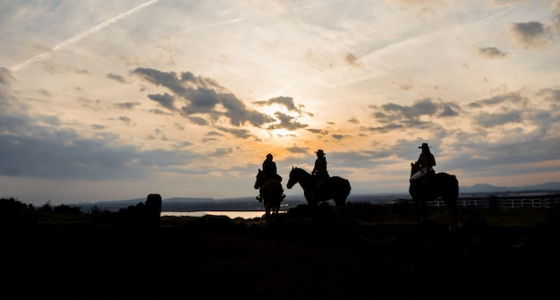 Le foto della siluetta di sono donne che guidano l'equitazione sul tramonto per il viaggio di attività Foto Premium