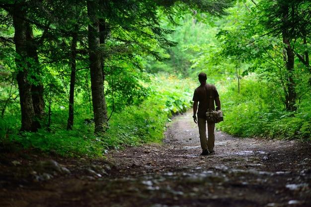 Siluetta di un uomo del viaggiatore nella foresta piovosa