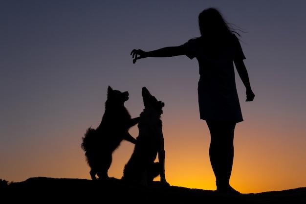 Silhouette di donna che gioca con due cani al tramonto di fronte a un lago amore per gli animali copia spazio