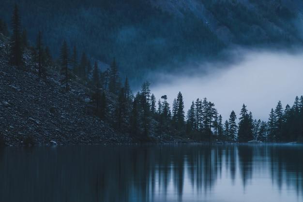 Sagome di abeti appuntiti su una collina lungo il lago di montagna nella fitta nebbia. riflessione delle conifere in acqua calma brillante. tranquillo paesaggio alpino al mattino presto. scenario atmosferico spettrale