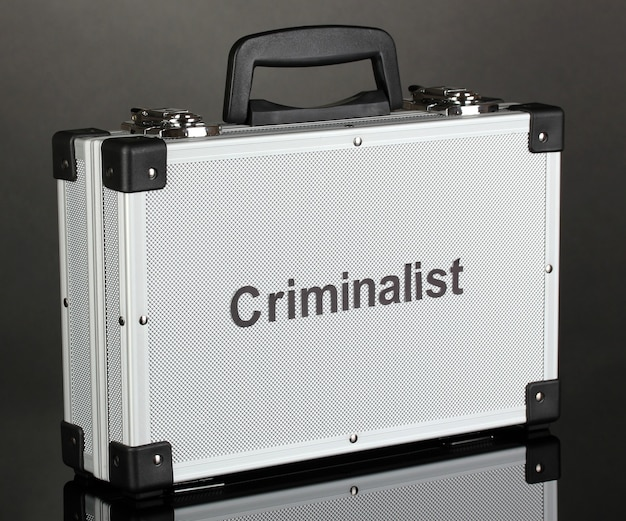 Diplomatico argenteo (valigia) su sfondo grigio