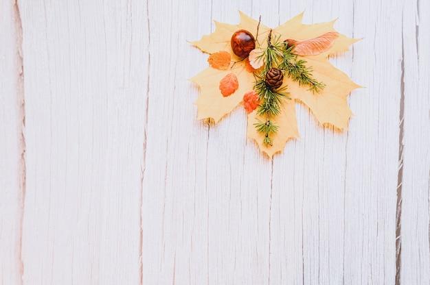 Singola foglia d'acero autunnale secca rossa e gialla, sopra di loro ci sono castagne, semi di acero e un rametto di larice con coni, su uno sfondo di legno beige. concetto di caduta, disposizione piatta