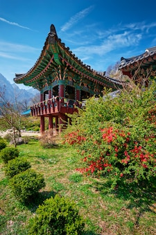 Tempio di sinheungsa nel parco nazionale di seoraksan, seoraksan, corea del sud