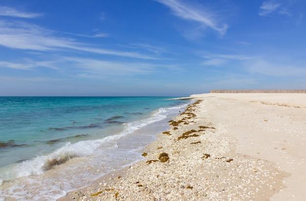 Isola di sir baniyas. spiaggia con un paesaggio di cielo blu