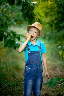 Un bambino di sei anni si trova in un vestito blu e cappello in un giardino con alberi di mele e morde una mela con i denti