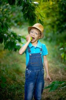 Un bambino di sei anni si trova in un giardino con alberi di mele e morde una mela con i denti