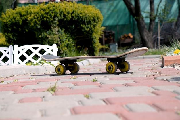 Skateboard per tempo attivo e sport