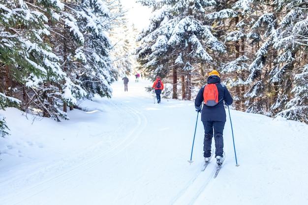Pattinatori nel sentiero nella foresta innevata di inverno
