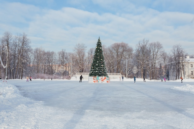 Pista di pattinaggio con un albero di natale nel mezzo in una giornata di sole sull'isola di yelagin a san pietroburgo, russia.
