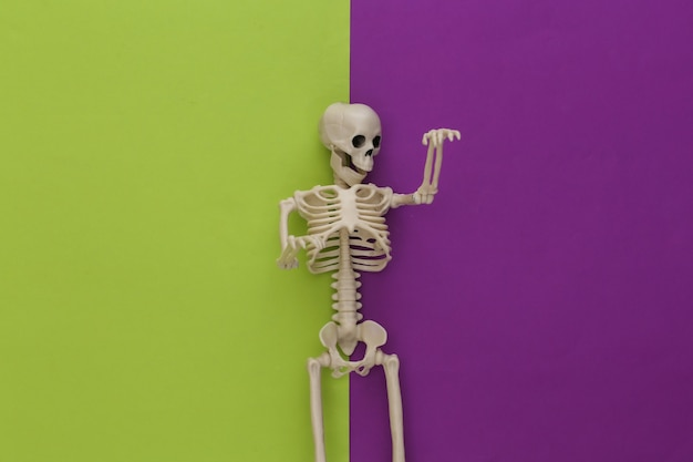 Scheletro su carta viola verde. decorazione di halloween, tema spaventoso