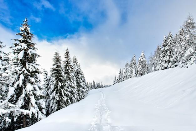 Pista di sci alpinismo dopo la nevicata in un luogo idilliaco