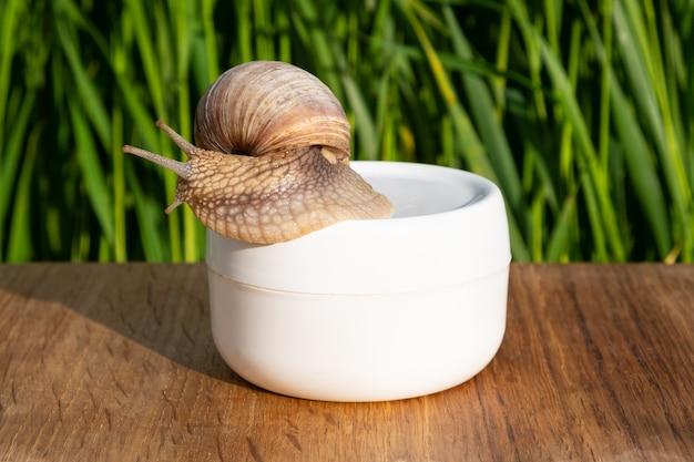 Cosmetici per il ringiovanimento della pelle su sfondo bianco con crema di lumaca e erba verde con spa di idratazione della pelle di mucina di lumaca