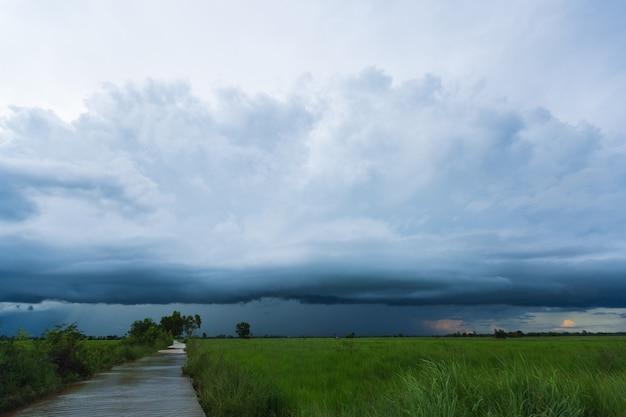 Cielo e nuvole con la nube tempestosa della pioggia sul campo di riso verde.