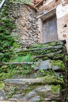 Una scala in pietra ardesia ricoperta di vegetazione umida verde e sfondo sfocato