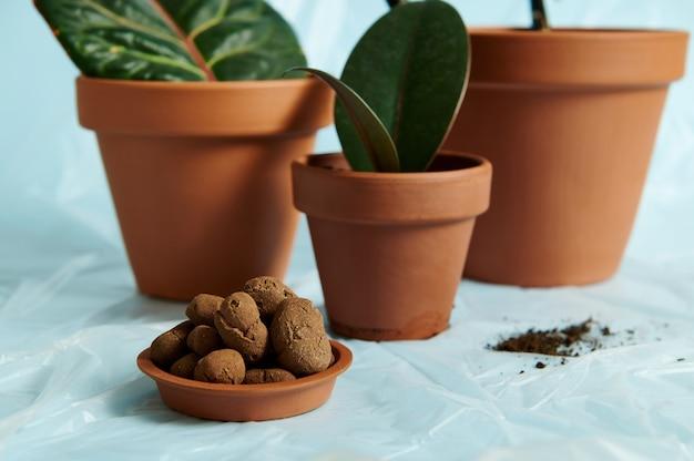 Una diapositiva di argilla espansa in un vassoio di argilla da un vaso di fiori sullo sfondo di piante da appartamento piantate. concetto di giardinaggio