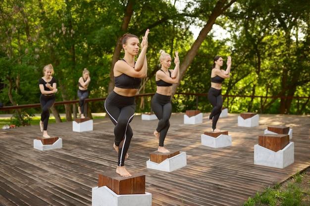 Donne magre che fanno esercizio di equilibrio sulla formazione yoga di gruppo nel parco estivo. meditazione, lezione in forma sull'allenamento all'aperto