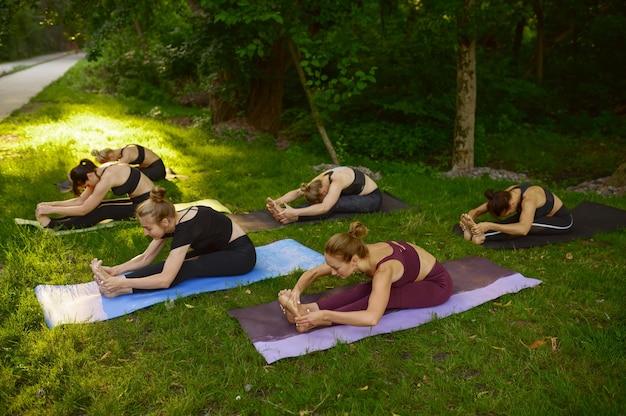 Donne magre che fanno esercizio di stretching su stuoie, formazione yoga di gruppo sull'erba nel parco. meditazione, lezione di allenamento all'aperto, pratica di rilassamento