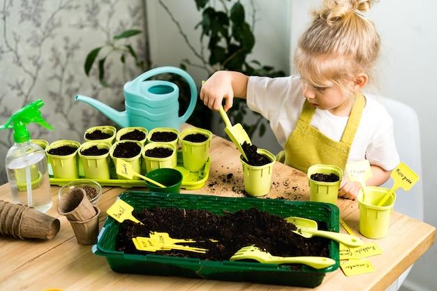 Una piccola ragazza bionda con un grembiule è impegnata a piantare semi per piantine, sorridendo, il concetto di giardinaggio per bambini.