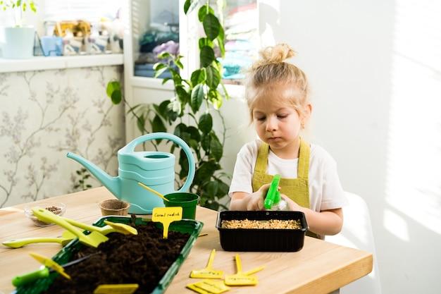 Una piccola ragazza bionda con un grembiule è impegnata a piantare semi per piantine, sorridendo, guardando il
