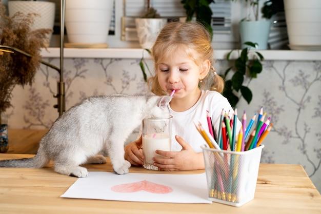 Una piccola ragazza bionda si siede a un tavolo con un gattino bianco scozzese e beve il latte da un bicchiere