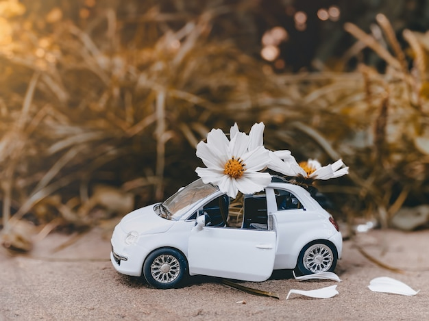 Una piccola auto blu per bambini si erge su uno sfondo giallo autunnale e su di essa ci sono bellissime margherite bianche. concetto di autunno.
