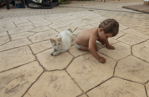 Il bambino gioca nel cortile di casa con l'animale domestico di famiglia un gatto bianco