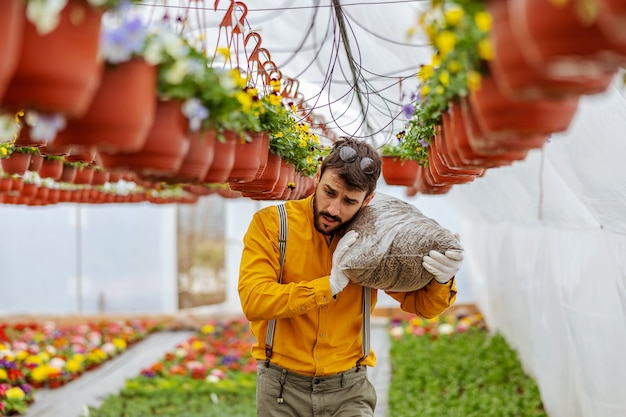 Piccolo imprenditore che trasporta fertilizzante sulla spalla mentre cammina in serra