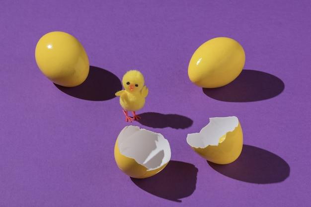 Un piccolo pollo con uova intere e rotte su uno sfondo viola.