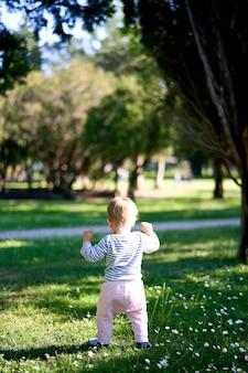 Un bambino piccolo cammina lungo un prato verde vista posteriore