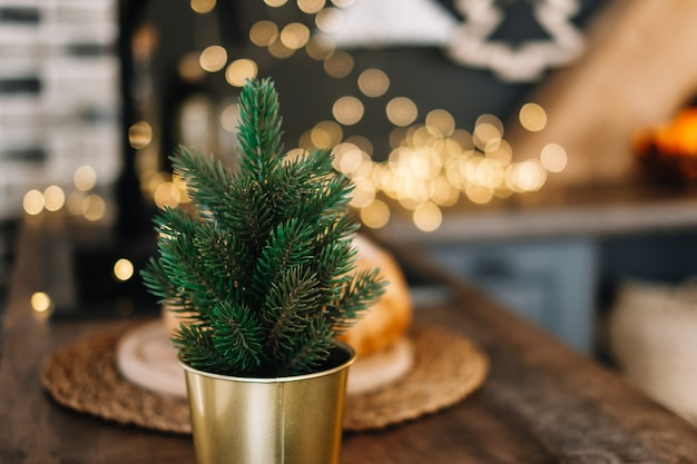 Piccolo albero di natale decorativo in una pentola sul tavolo della cucina.