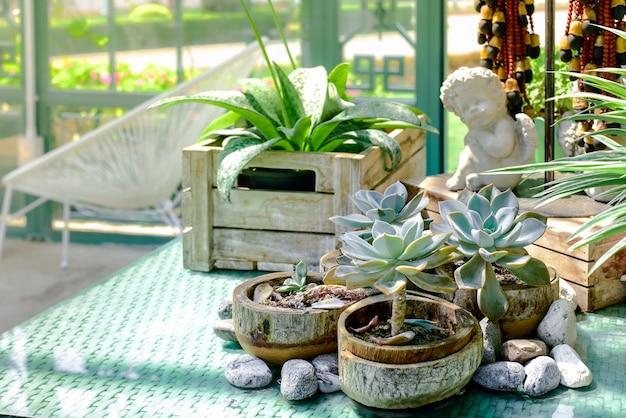 Piccolo giardino con piante in vaso con una bella luce solare naturale