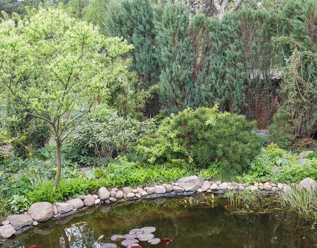 Piccolo giardino con laghetto. bellissimo design del paesaggio.