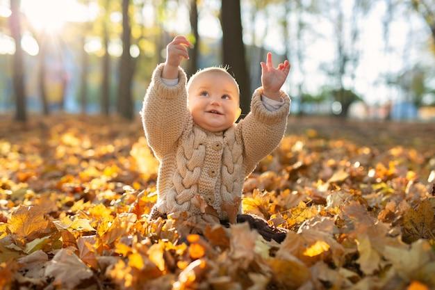 La piccola ragazza in un vestito lavorato a maglia è seduta nella foresta in foglie gialle.