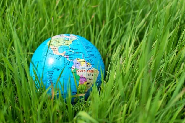 Piccolo globo nell'erba