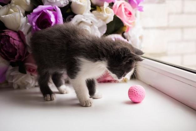 Un piccolo gattino grigio su uno sfondo di fiori artificiali gioca con una palla rosa sul davanzale