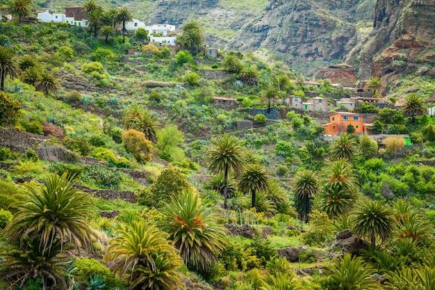 Piccole case e palme nella famosa valle di masca, tenerife, isole canarie, spagna