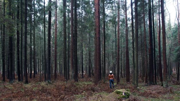 Una piccola figura umana si trova nel mezzo di un'enorme foresta e guarda in alto