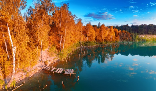 Una piccola isola sul lago con alberi autunnali gialli.