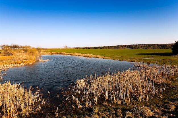 Piccolo lago, fotografato nella stagione estiva