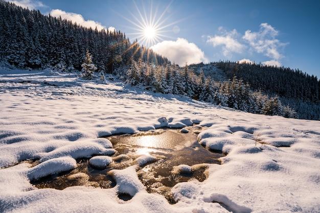 Piccola pozza di neve bianca sciolta nel caldo sole primaverile nelle insolite montagne dei carpazi