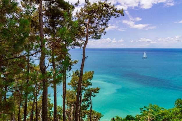 Una piccola barca a vela nel mar nero. paesaggio con alberi di pino, mare e cielo.