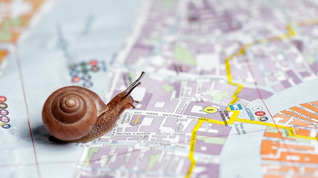 Piccola lumaca striscia sulla mappa della città