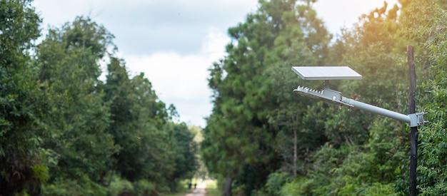 Piccoli pannelli solari fotovoltaici con lampade a luce nella foresta