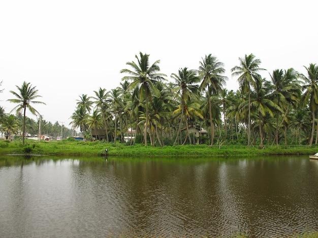 Un piccolo villaggio nella costa occidentale dell'oceano indiano, sri lanka