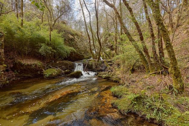 Piccola cascata formata dal fiume teo nella zona della galizia, in spagna.