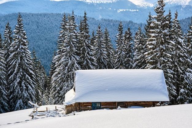 Piccola casa di legno ricoperta di neve fresca caduta circondata da alti pini nelle montagne invernali.